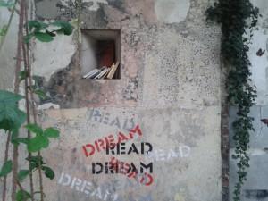 dreamread2